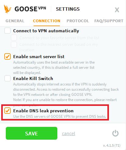 GooseVPN DNS leak test